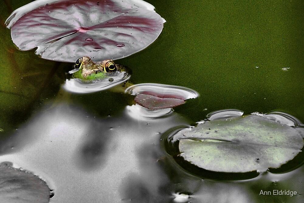 Froggie by Ann Eldridge