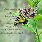 entertain strangers-Hebrews 13:2 by vigor