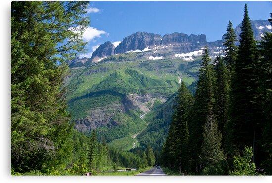 Entering Glacier National Park by David F Putnam
