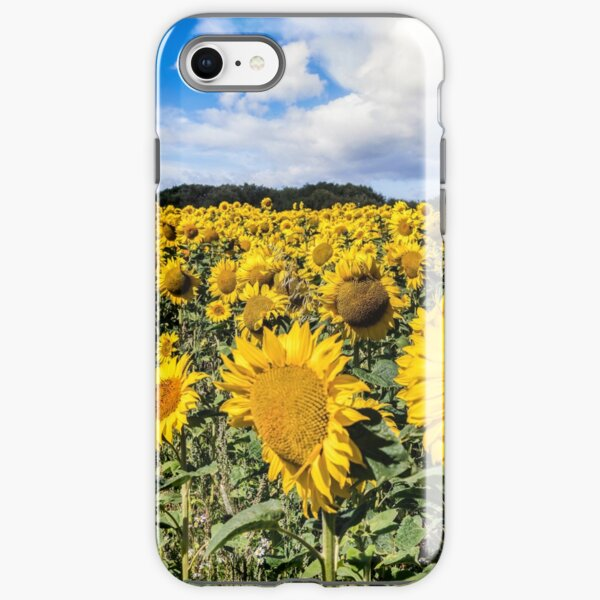 Field Of Sunflowers With A Blue Sky And Clouds iPhone Tough Case