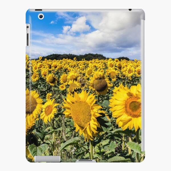 Field Of Sunflowers With A Blue Sky And Clouds iPad Snap Case