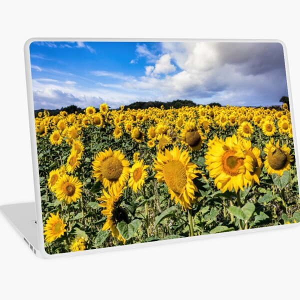 Field Of Sunflowers With A Blue Sky And Clouds Laptop Skin