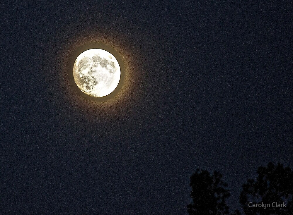 The Moon Tonight by Carolyn Clark