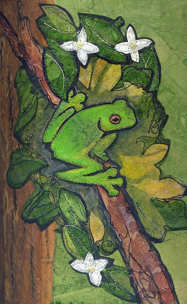 Tree Frog by Barbara Nye