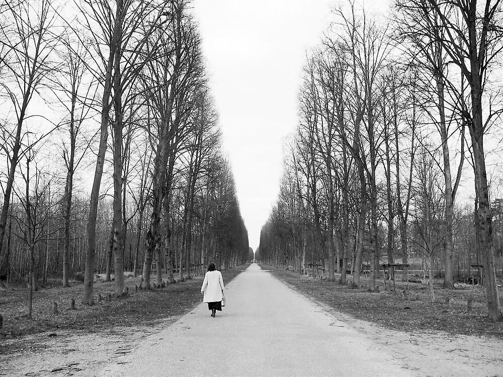 Versailles by elvines