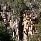 On the Way down into Cania Gorge! hinterland East coast Queensland, Australia. by Rita Blom