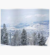 Colorado Rockies Poster