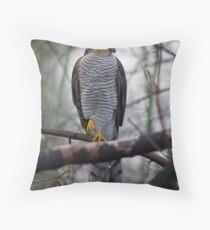 Sparrowhawk Throw Pillow