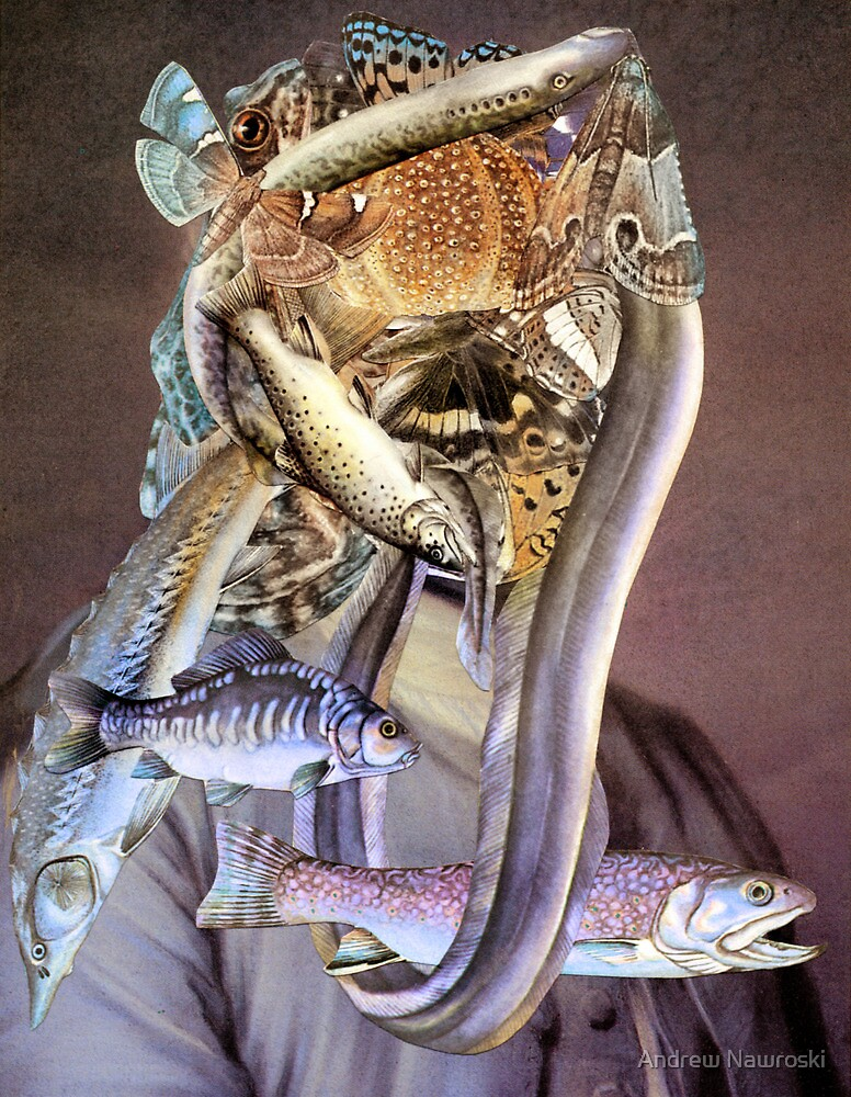 The Fisher-man. by Andy Nawroski
