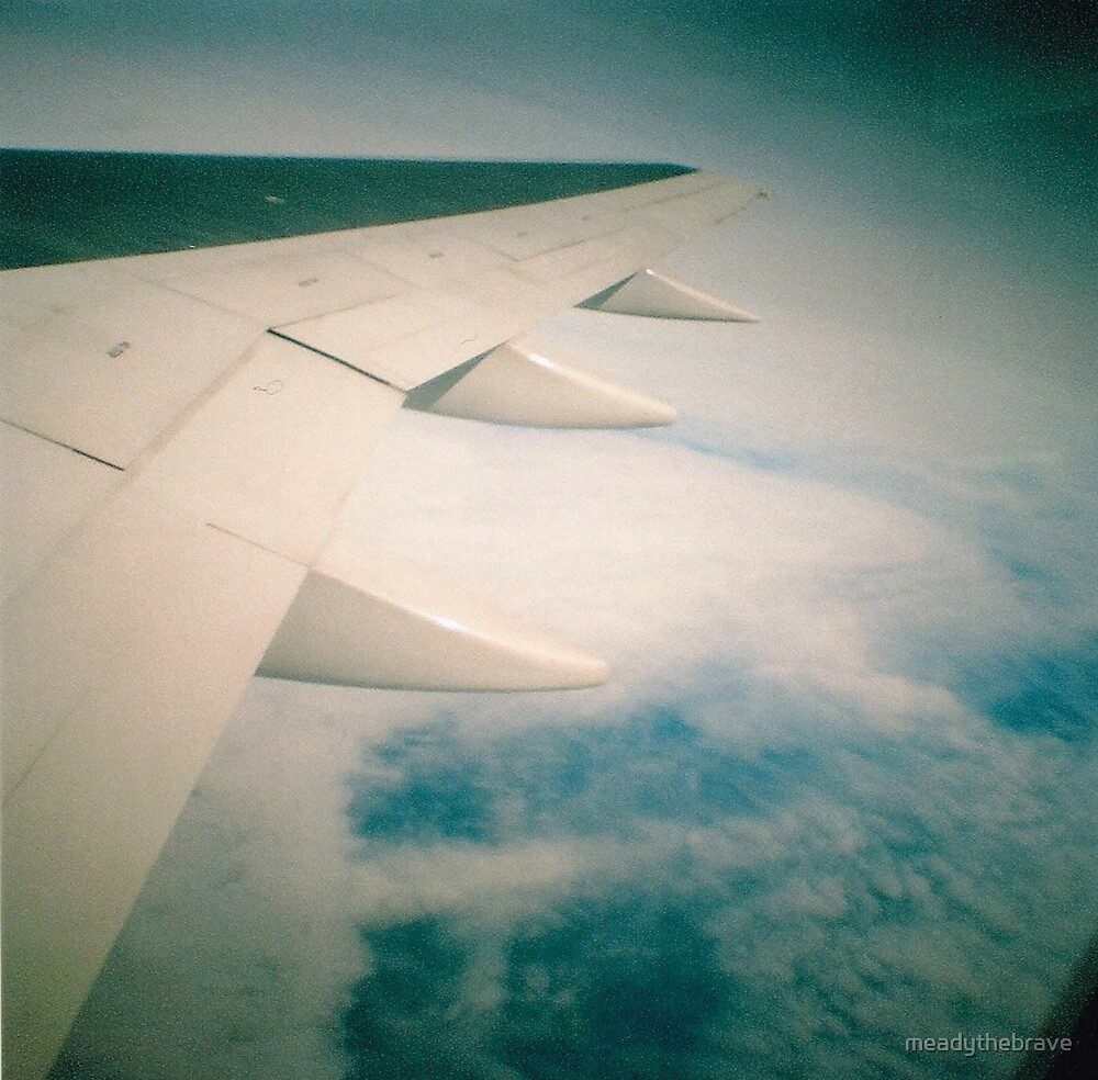 Plane to New York by meadythebrave