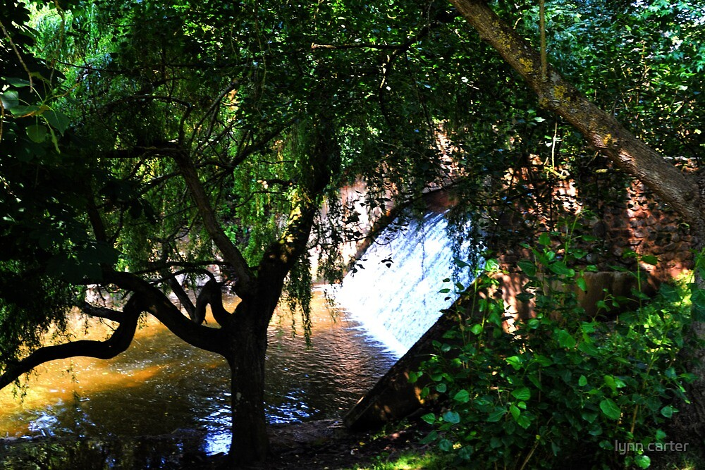 Small Waterfall At Sidford, Devon.UK by lynn carter