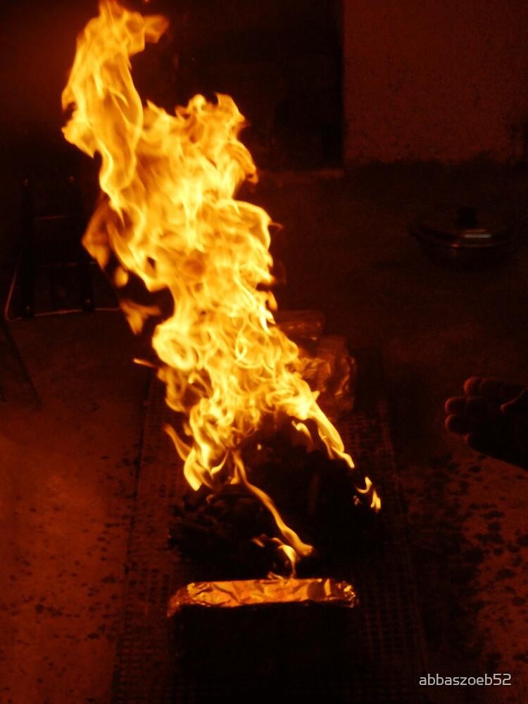 B.B.Q on fire by abbaszoeb52