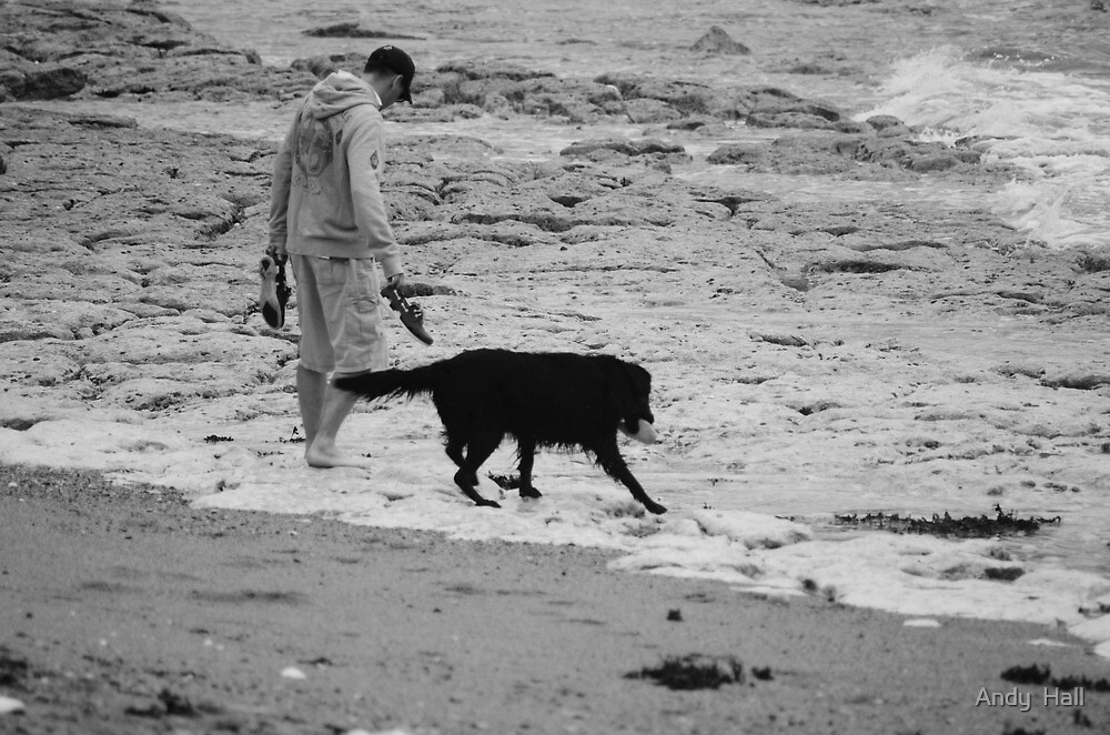 Seadog by Andy  Hall