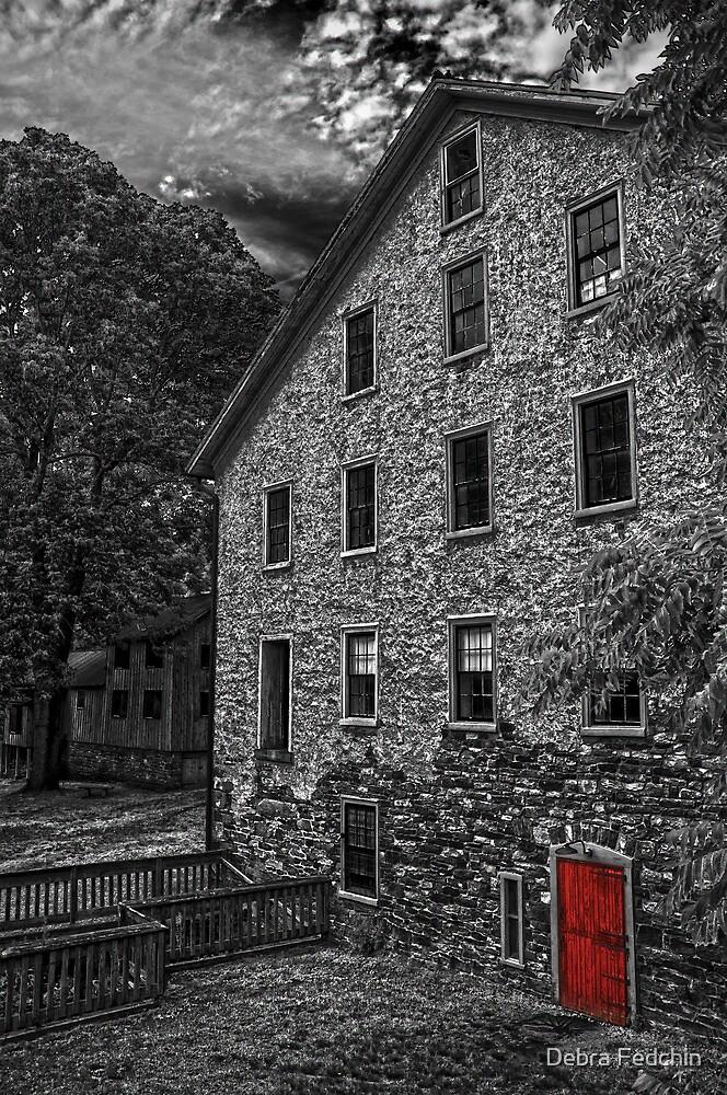 The Red Door by Debra Fedchin