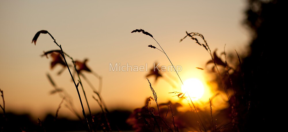Sunset on the Grass by Michael  Kemp