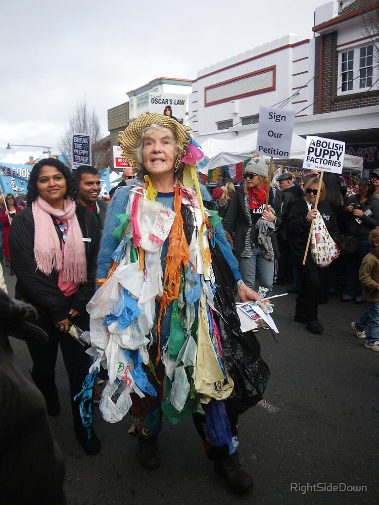 """""""DOWN WITH PLASTIC, DOWN WITH PLASTIC...."""" by RightSideDown"""