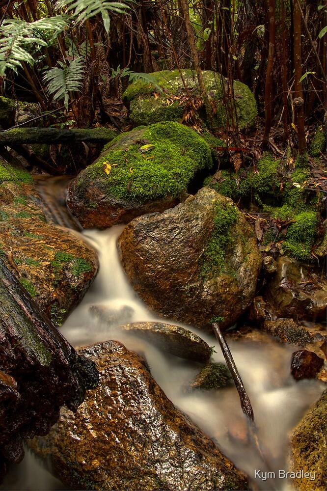 Creek Trickle  Canberra  by Kym Bradley