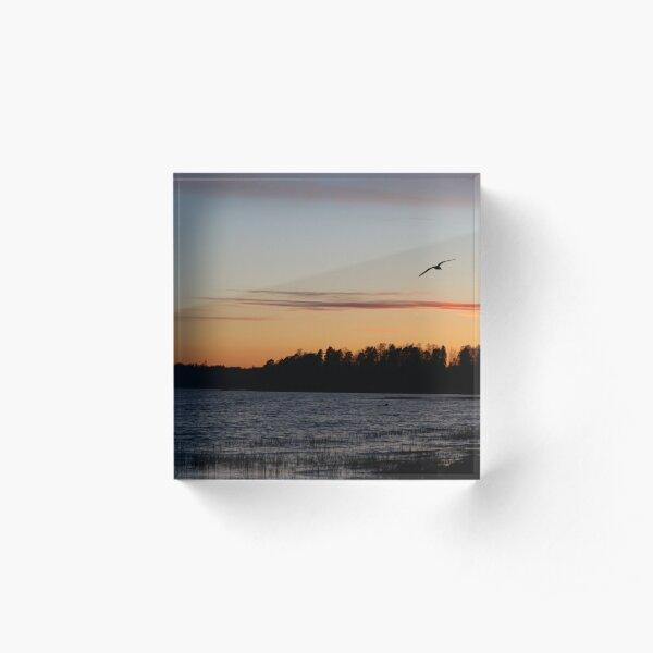 Sunset and bird Acrylic Block