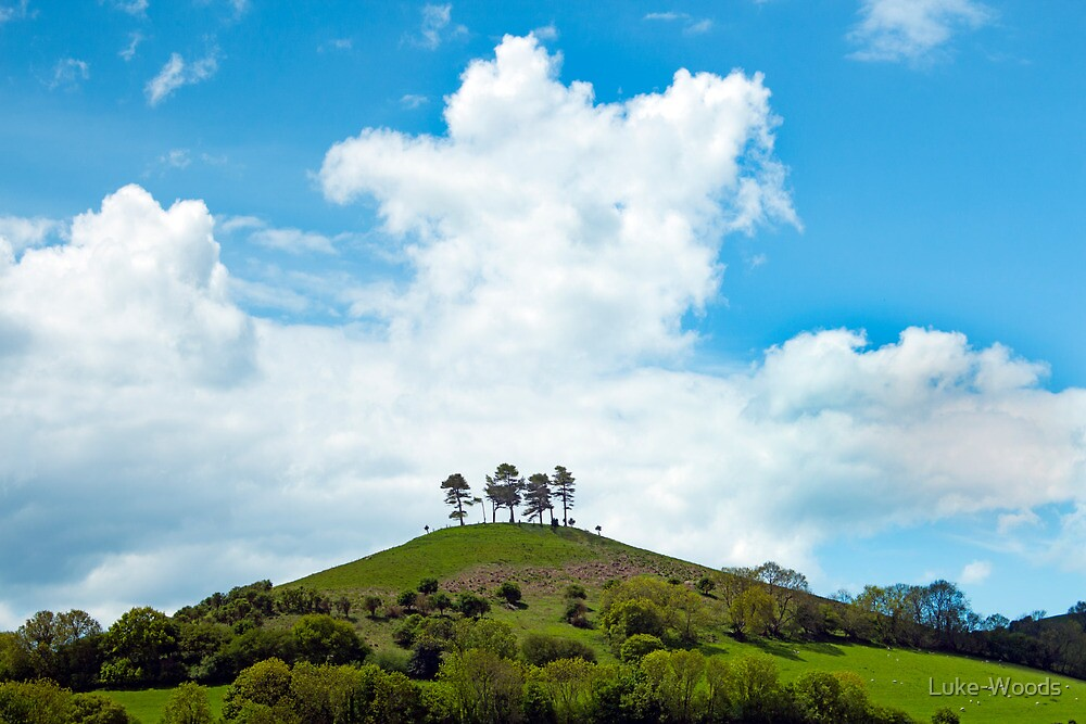 Homely Hill by Luke-Woods