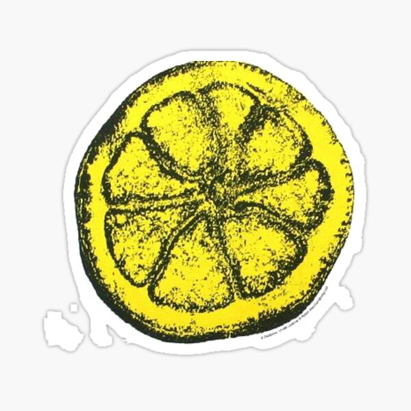 The Stone Roses Pattern Sticker