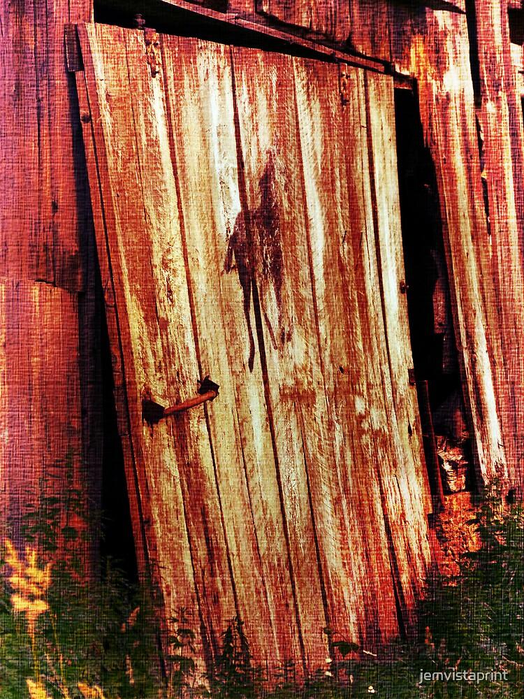 Broken Barn Door by jemvistaprint
