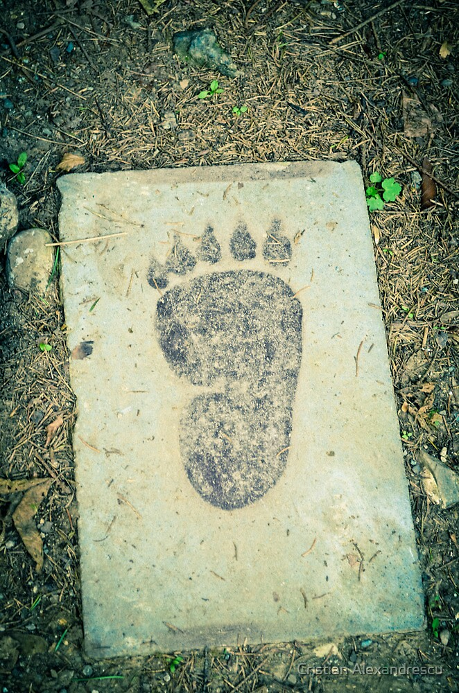 Foot print by Cristian Alexandrescu