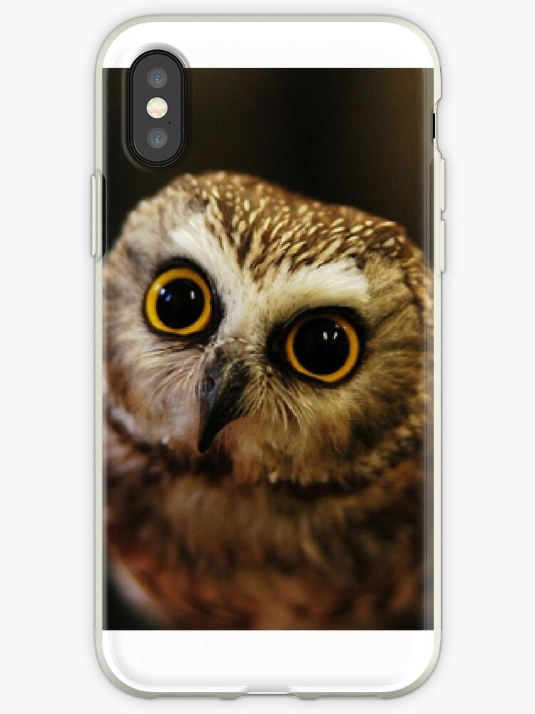 Owl by Em O'Reilly
