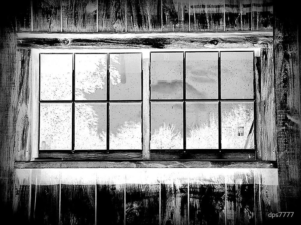Window Reflection by David Schroeder