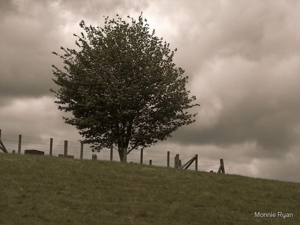 Cemetery Hill by Monnie Ryan