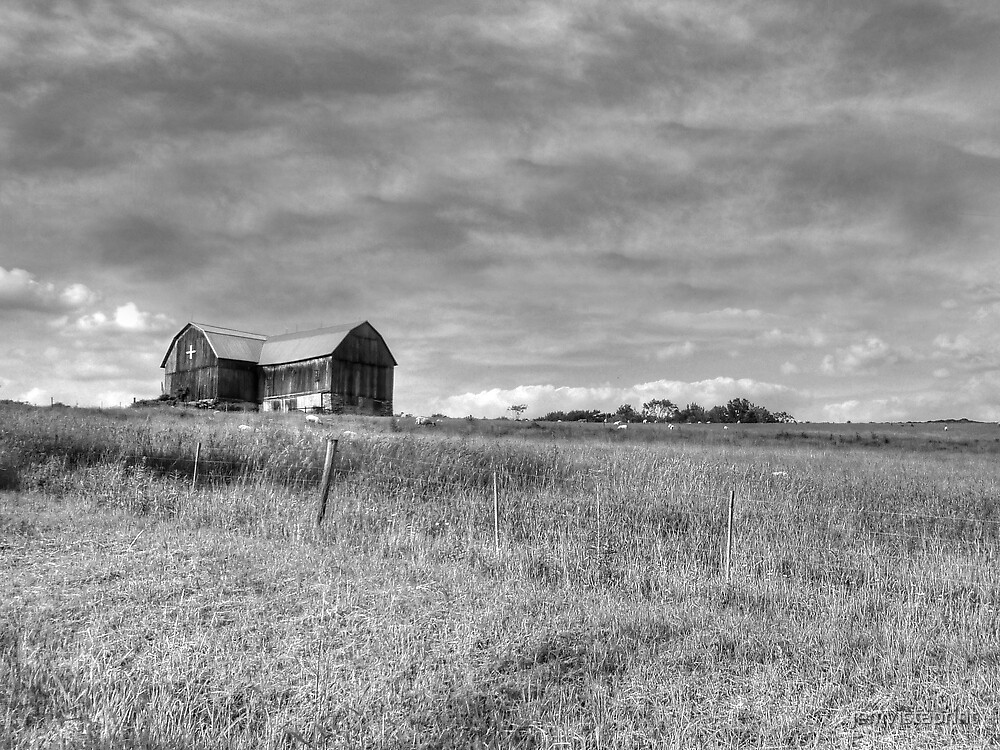 Black and White Barn photo art by jemvistaprint