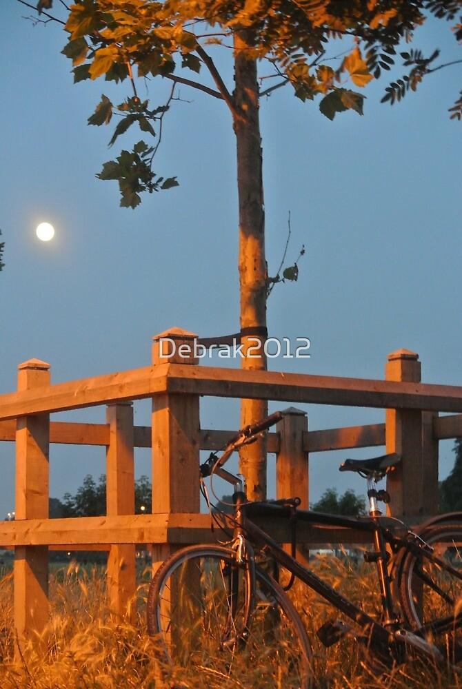 Bike in the moonlit night  by Debrak2012
