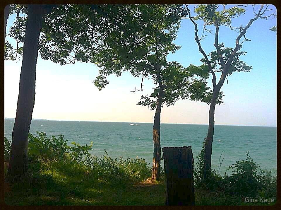 Camping in Put In Bay, Ohio by Gina Kaye