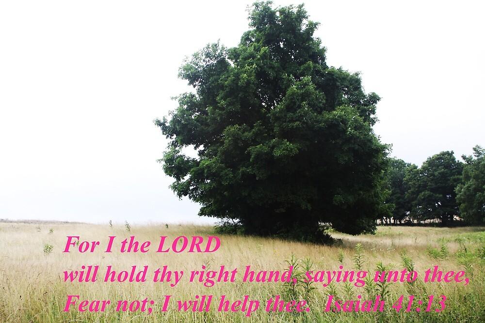 ISAIAH 41:13 CARD by Pauline Evans