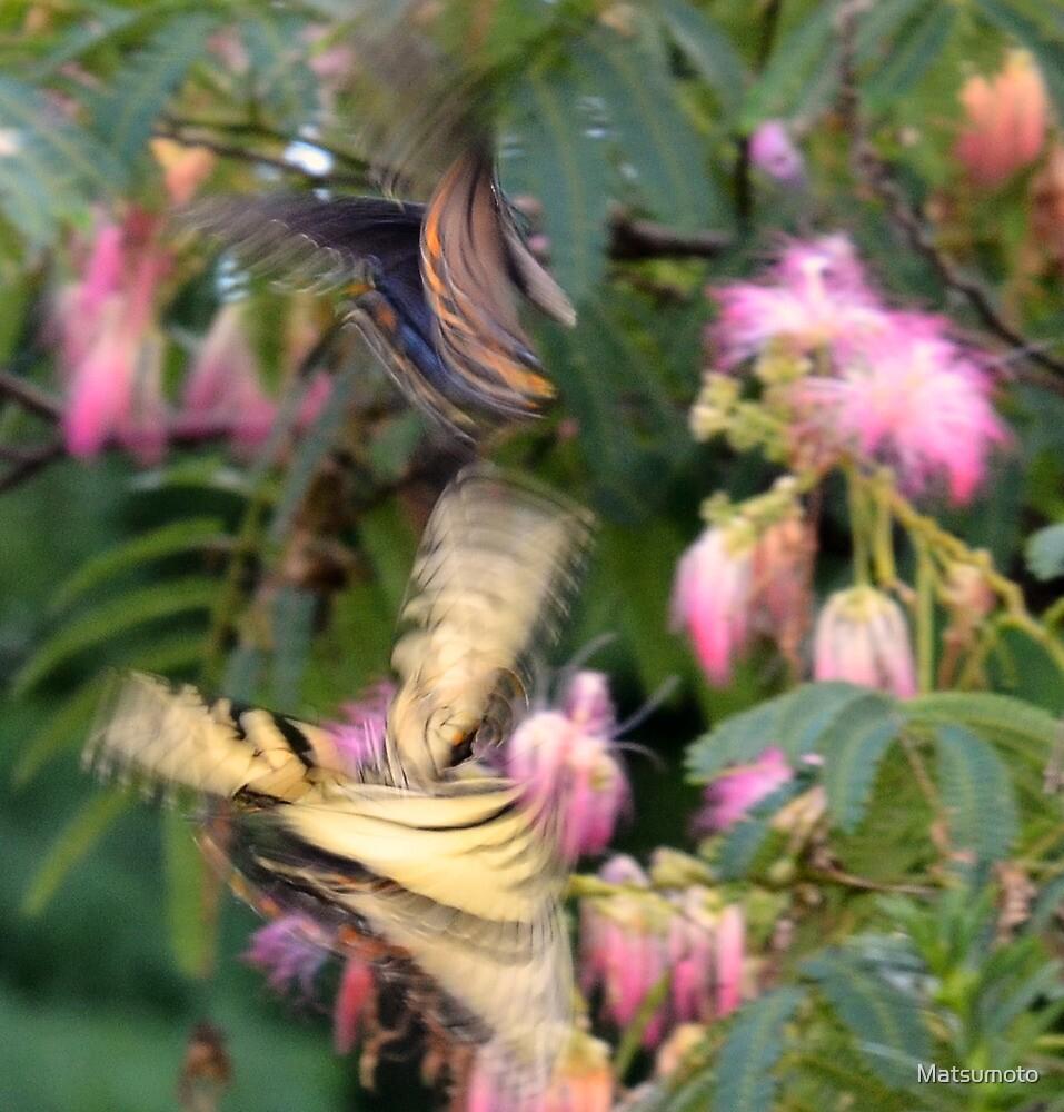 Tanz der Schmetterlinge by Matsumoto