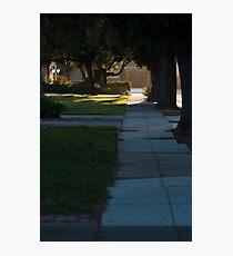Suburbs  Photographic Print