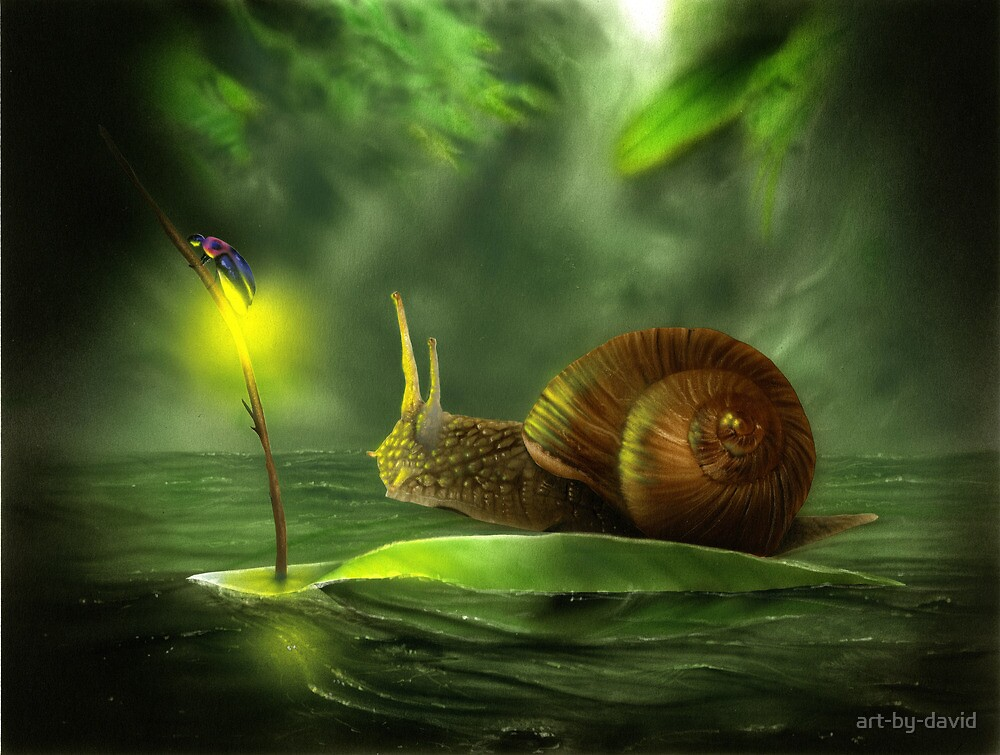 A Snail's Pace by art-by-david