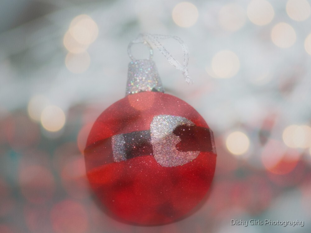 The Tinsel And The Lights by Dishy Girls Photography