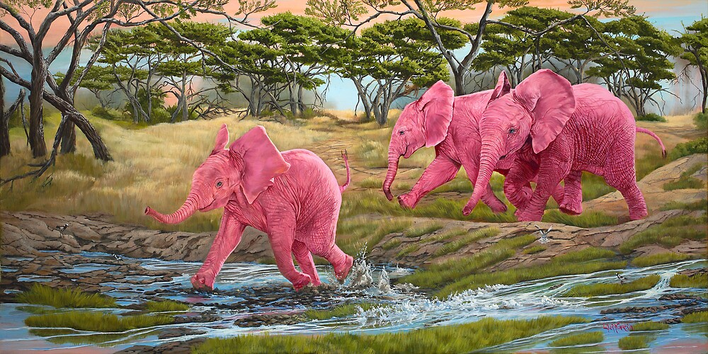 A Splash of Pink by Laura Curtin