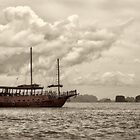 Traditional Chinese junk ship in Phang Nga Bay, Thailand by Tony Steinberg