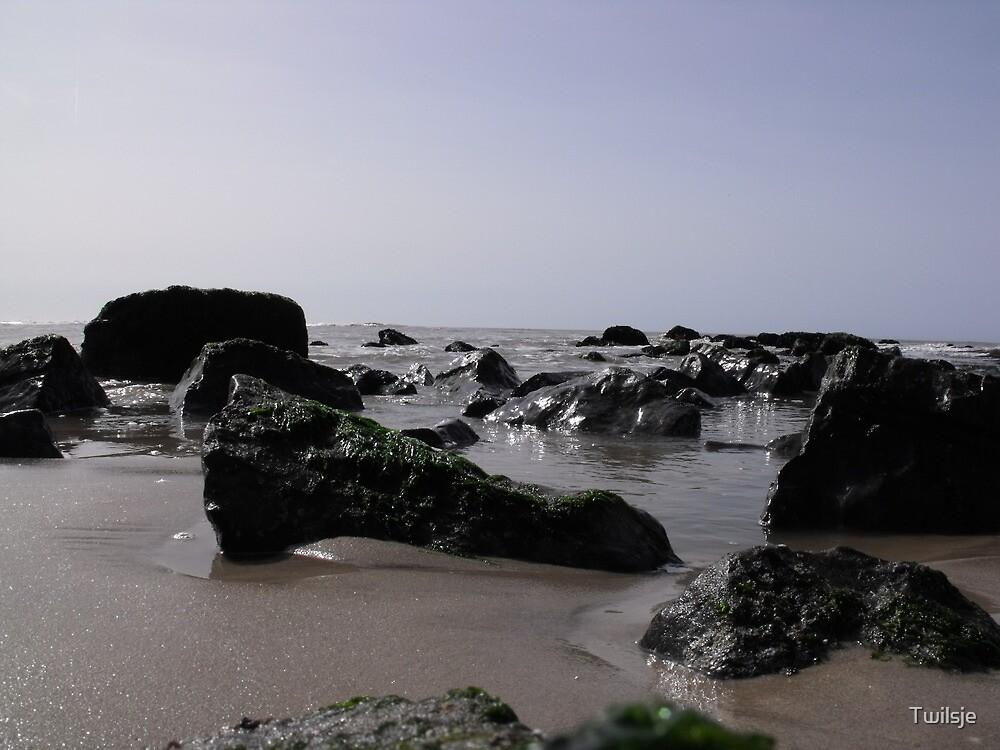 Stones on the beach. by Twilsje