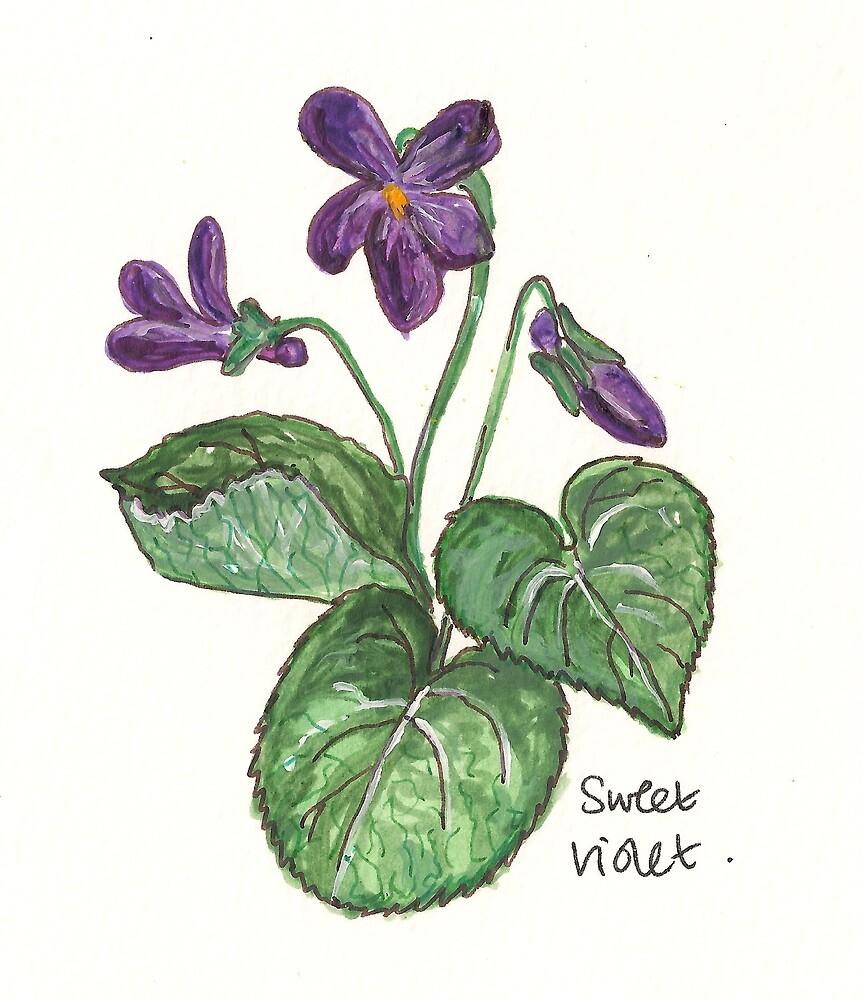 sweet violet by Sam Burchell