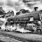Steam Ranger by Ladyshark