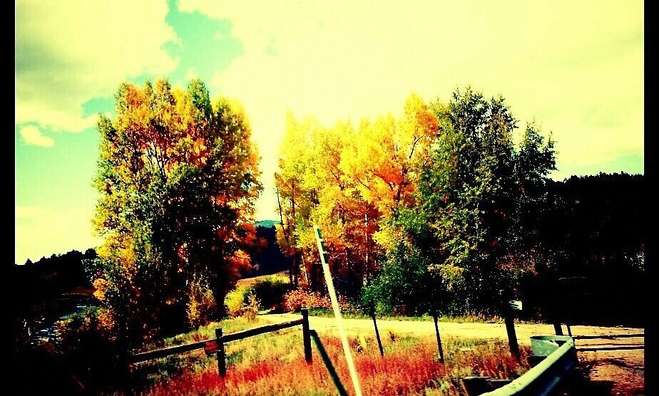 Colors of Colorado  by Kate Shuker