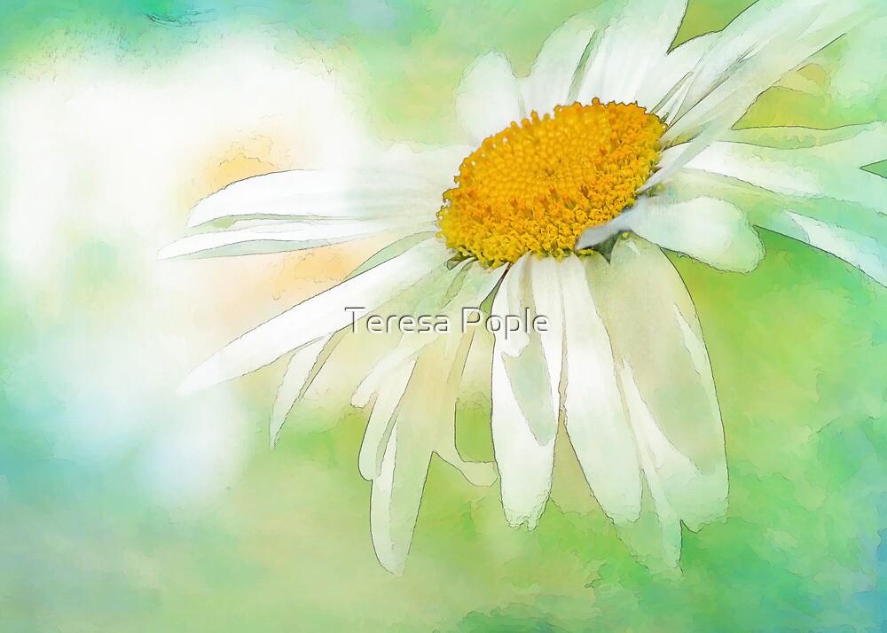 summer by Teresa Pople