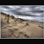 Dark day on the Beach by Warren. A. Williams