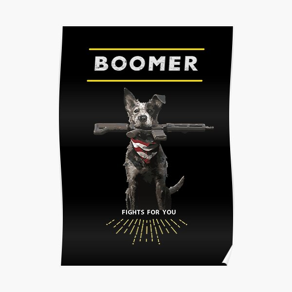 Boomer Fights For You Poster