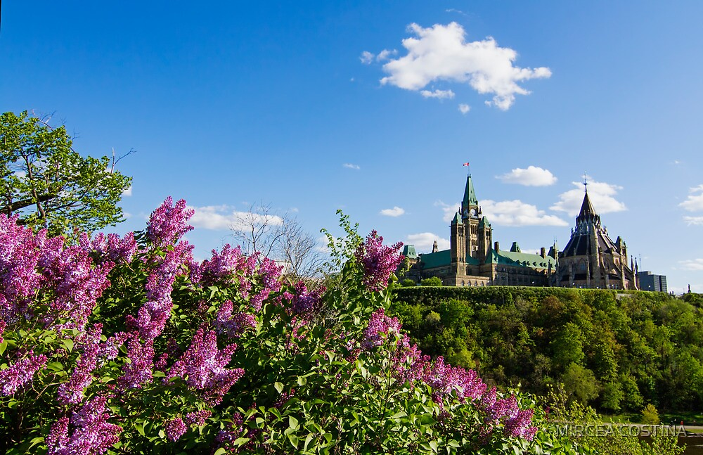Ottawa Parliament by MIRCEA COSTINA