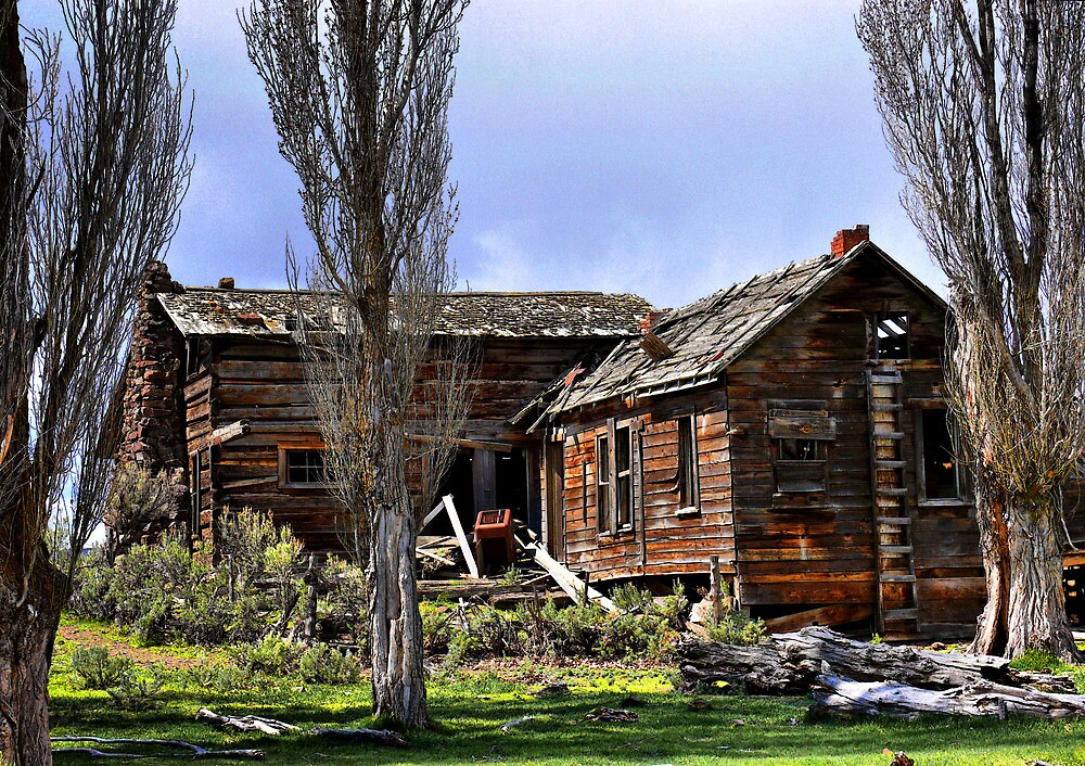 A Lost Dream by Charles & Patricia   Harkins ~ Picture Oregon