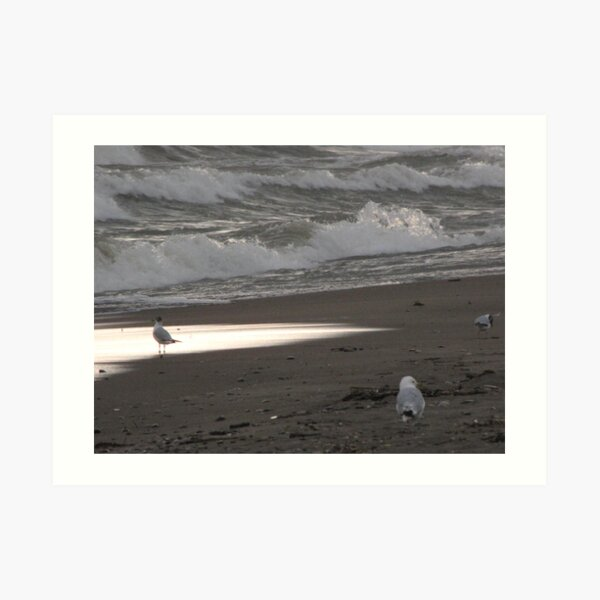 Lake Erie, Erieau by Elisabeth and Barry King™ Art Print