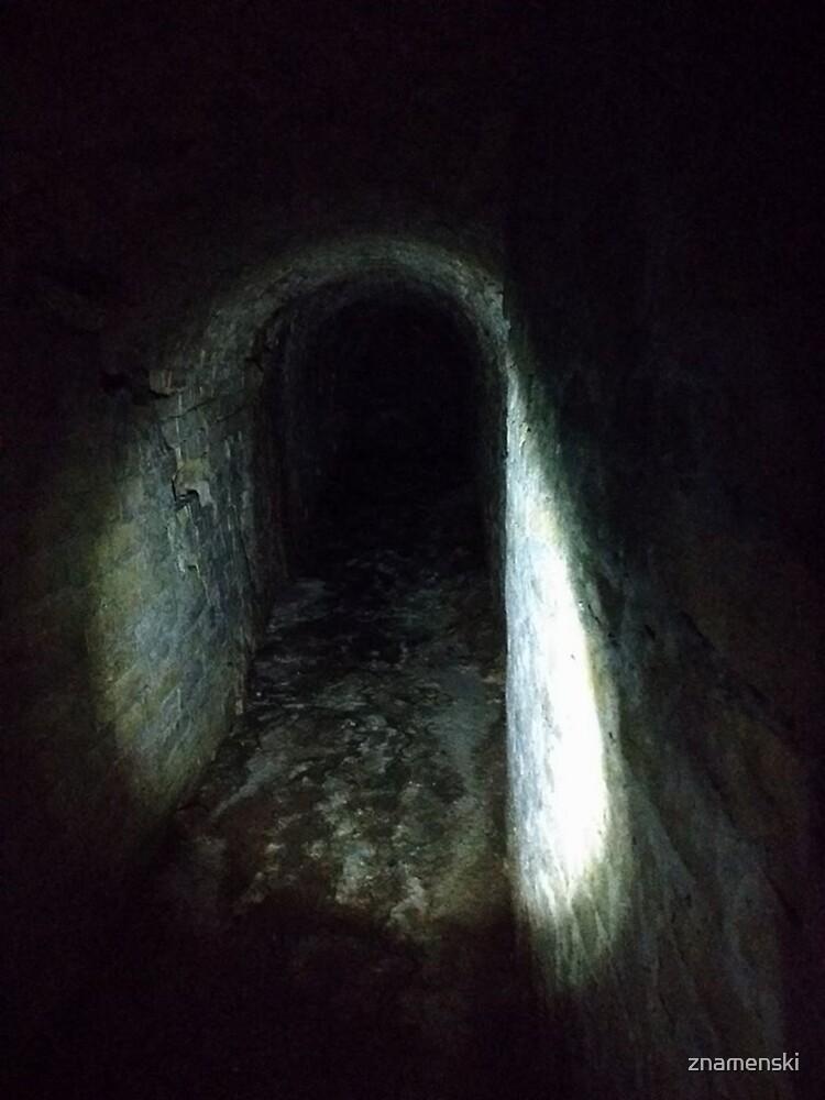 Tunnel, Darkness by znamenski